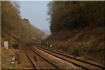 TQ2151 : Railway Cutting, Betchworth, Surrey by Peter Trimming