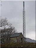 SH7519 : Phone mast near Dolserau Hall by liz dawson