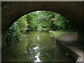 SP0274 : Worcester and Birmingham Canal south-west of Hopwood by Roger  Kidd