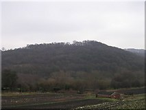 SE2333 : Post Hill - viewed from Hough Side Road by Betty Longbottom