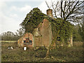 TM3667 : Derelict house at Rotten End, Sibton by Adrian S Pye
