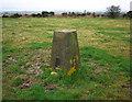 J4177 : Standard Hill Triangulation Pillar by Rossographer