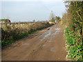 TG5001 : Bridleway to Wheatcroft Farm, Hobland by Evelyn Simak