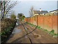 TG5001 : Bridleway past cottages in Hobland by Evelyn Simak
