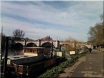 TQ1774 : Richmond Bridge, viewed from the Thames Path by Robert Lamb