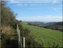 TR2841 : Footpath beside Long Wood heading to Dover by David Anstiss