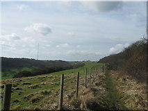 TR2841 : Footpath beside Long Wood towards West Hougham by David Anstiss