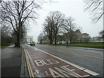 SU4212 : Southampton's splendid parks (29) by Basher Eyre