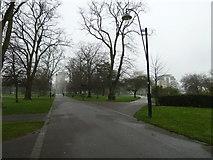 SU4212 : Southampton's splendid parks (46) by Basher Eyre