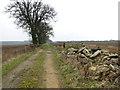 TG1403 : Rubble beside track to Planet Farm, Hethersett by Evelyn Simak