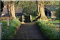 SK2607 : All Saints Church, Graveyard  (7) by Chris' Buet
