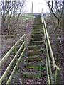 TM3763 : Steps to the A12 Saxmundham Bypass by Geographer