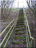 TM3763 : Steps to the A12 Saxmundham Bypass by Adrian Cable