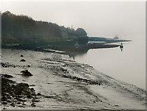 SJ3681 : River Mersey by David Dixon