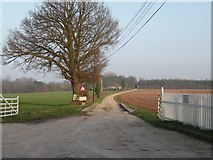 TL8068 : The road to Stanchils Farm by Robert Edwards