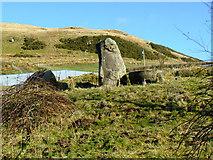 NS2472 : Standing stone at Shielhill Farm by Thomas Nugent
