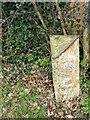 ST9122 : Milepost, Ludwell by Maigheach-gheal