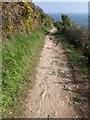 SX2150 : Coast path, Downend by Derek Harper