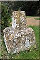 SP1453 : Sundial, Binton church by Philip Halling