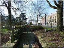 SU4212 : Southampton's splendid parks (74) by Basher Eyre