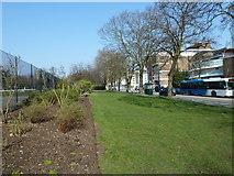 SU4212 : Southampton's splendid parks (82) by Basher Eyre