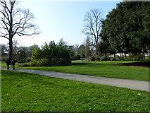 SU4212 : Southampton's splendid parks (84) by Basher Eyre