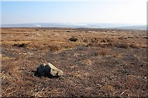SE4996 : Boulder, Whitestones Ridge by Mick Garratt