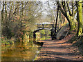 SD7400 : Bridgewater Canal; Crane and Worsley Bridge by David Dixon