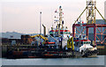 J3675 : Two tugs at Belfast by Rossographer