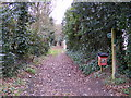 TM3968 : Love Lane footpath to North Green by Adrian Cable