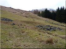 NN2218 : Shielings in Glen Fyne by Richard Law