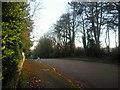 TQ4370 : Camden Park Road, Chislehurst by Marathon