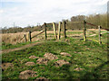 TG2105 : Marshgate and stile in Marston Marsh, Norwich by Evelyn Simak