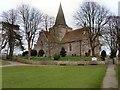 TQ5202 : St Andrew's Church, Alfriston by Paul Gillett