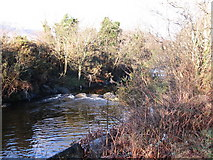 J3731 : A weir on the Shimna River at Islands Park by Eric Jones