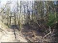 NZ1458 : Public footpath,Beda Hills by brian clark