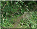 SS8583 : Very small footbridge in Cwm Ffos by eswales