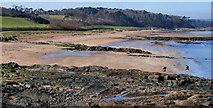 J4782 : The shore at Crawfordsburn (7) by Albert Bridge