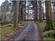 SH5848 : Track leading to footpath by Chris McAuley