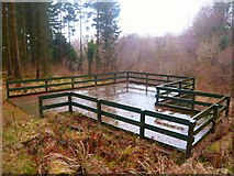 NX4858 : Outdoor Stage in Balloch Wood by Andy Farrington