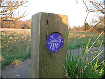 TG2105 : Footpath marker on Marston marshes nature walk by Adrian S Pye