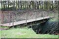 TL0232 : Footbridge by Barry Ephgrave