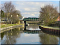 SJ7099 : Bridgewater Canal by David Dixon