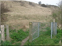 TR3140 : Unused kissing gate on Western Heights by David Anstiss