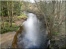 NT3366 : The South Esk from the Maiden Bridge by kim traynor