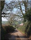 ST0204 : Lane at Westcott by Derek Harper