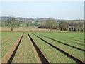 SJ7600 : Crop field north of Badger, Shropshire by Roger  Kidd