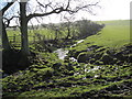 NZ0675 : Pike Hole near Birneys by Les Hull