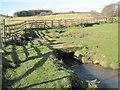 NZ0675 : Footbridge over Blackheddon Burn, near Birneys by Les Hull
