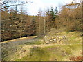 NY8645 : Head of a disused mine shaft above Allenheads by Mike Quinn